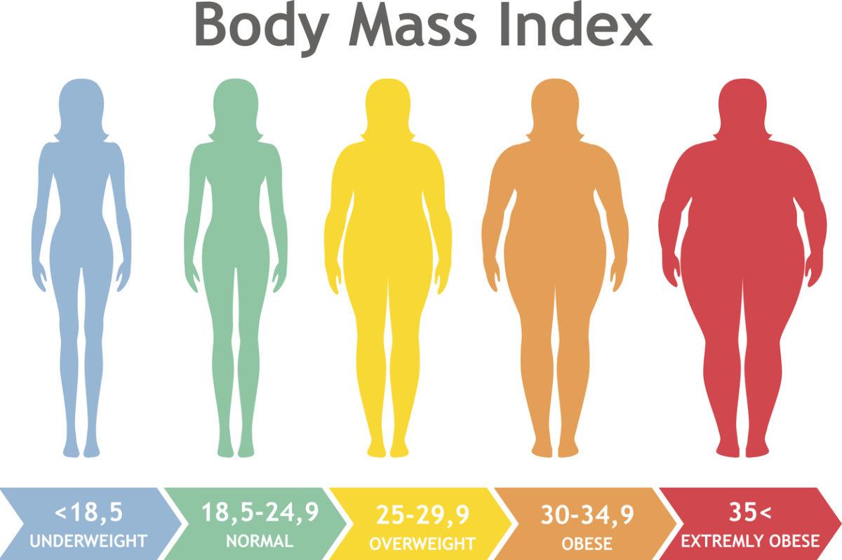 valutazioni della scala di grasso corporeo
